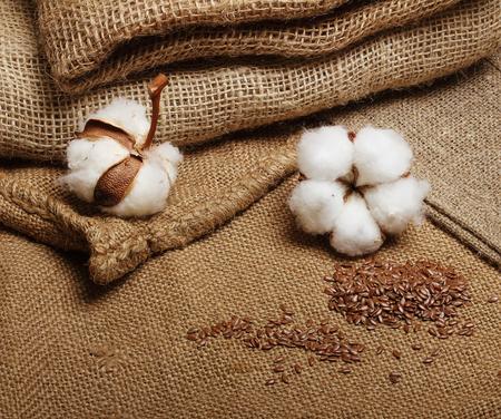 Baumwollpflanze Blume mit Leinsamen auf Jutesack Textil-Hintergrund
