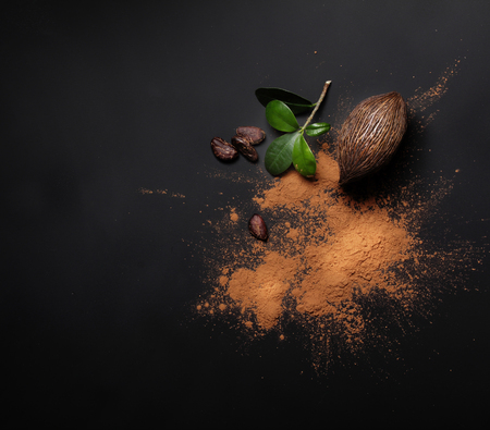 Cacao beans and powder on black background Stockfoto