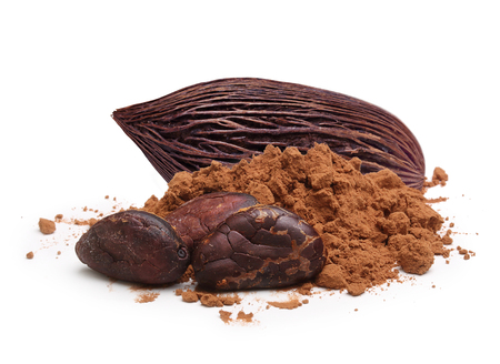 Cacao beans and powder isolated on white background 版權商用圖片 - 61262750