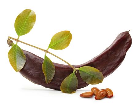 tamarindo: vaina de algarroba y semillas aisladas sobre un fondo blanco