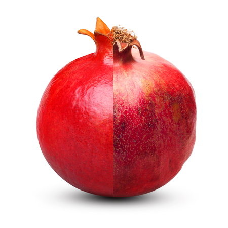 aging concept: Overripe and fresh pomegranate isolated on white background. Aging concept.