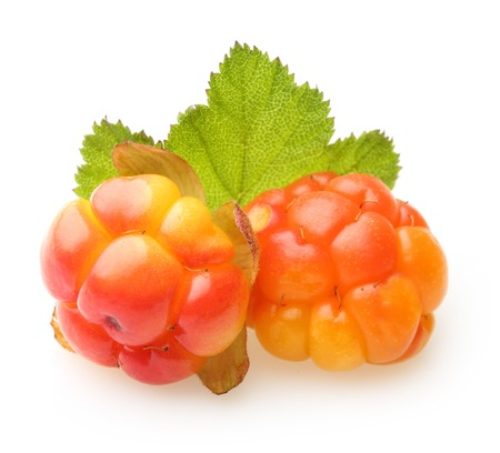 Cloudberry Berry isolated