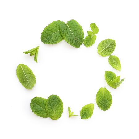 Green mint leaves isolated Imagens