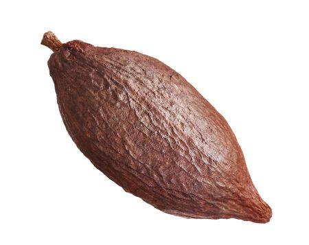 Cacao pod isolated Imagens