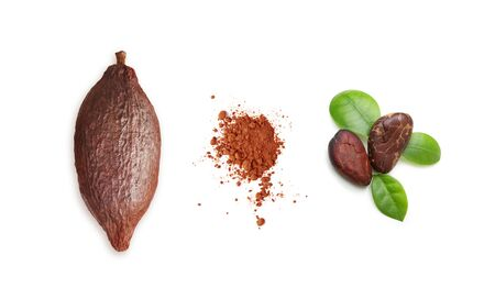 Cacao pod isolated on white background Imagens