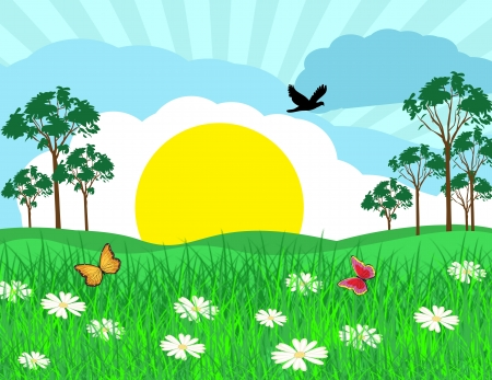 Summer sunny landscape on beautiful nature, vector illustration