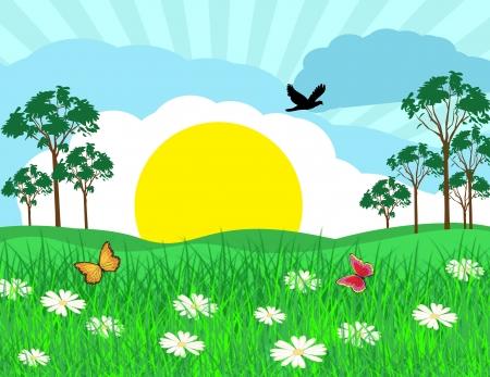 Summer sunny landscape on beautiful nature, vector illustration