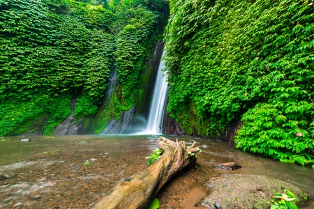 Waterfall in the tropical forest. Munduk waterfall, Bali, Indonesia