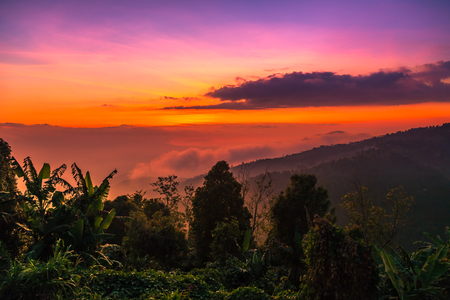 Beautiful mountain scenery view on with forest at sunset time, Bali, Indonesia
