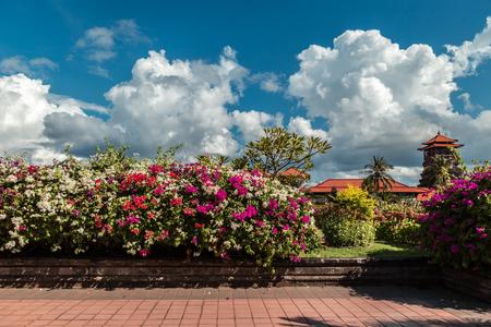 Nusa Dua resort in Bali Indonesia - nature flowers background