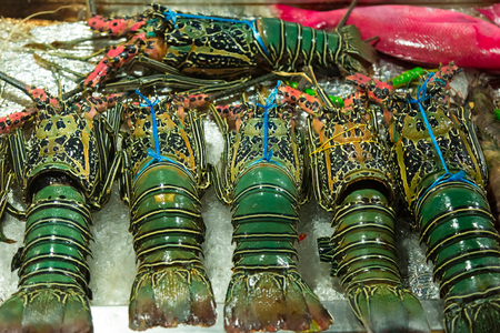 Fresh lobsters on ice close-up, street food in Asia