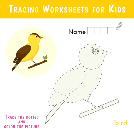 Tracing Worksheets for Kids. Educational Game for Preschool Children. Crossword puzzle. Cute bird.