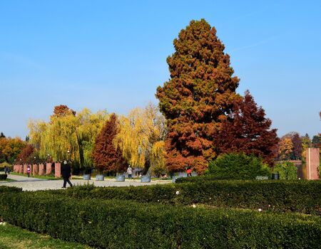 Autumn landscape with peaceful and colorful trees in Herastrau Park or King Michael I Park Bucharest, in a sunny autumn day Stock Photo