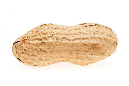peanut on a white background