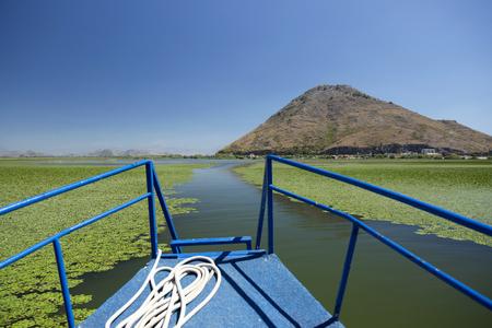 スカダー湖に沿って睡蓮の間で船の帆します。モンテネグロ。