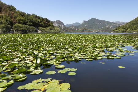 Skadar Lake and its surrounding mountains, Montenegro. Imagens