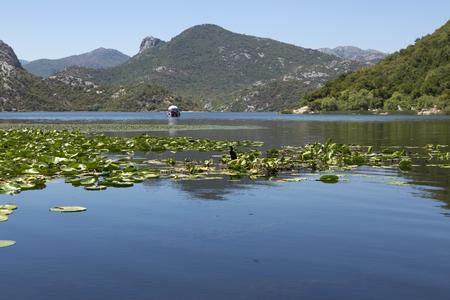 スカダー湖や周辺の山々、モンテネグロ。