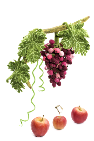 trabajo manual: A bunch of grapes from felted wool next to apples on a white background Foto de archivo