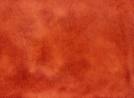 Texture and background of soft velvety skin, suede.