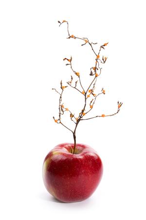 木のような植物と熟した赤いリンゴ。