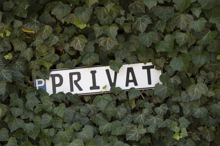 Metal sign with the inscription PRIVAT on the fence, overgrown with ivy
