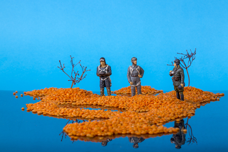 Landscape with islands in the sea and soldiers of the Second World War. Installation of grains of lentils, branches of plants and tin soldiers.