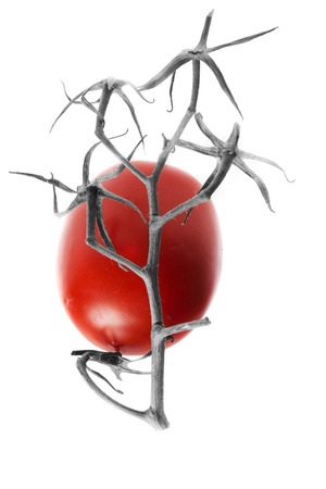 Hieroglyph. A tomato with a branch on a white background, reminiscent of a hieroglyph.