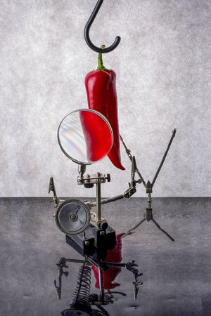 Still life with red pepper and a magnifying glass Imagens