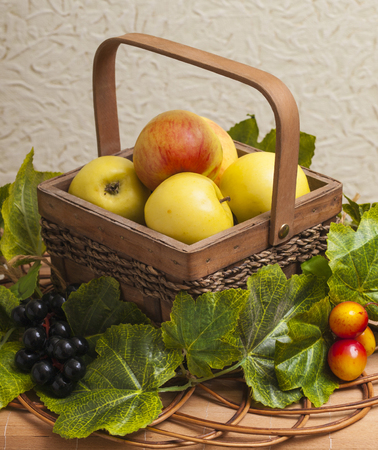 Apples in a wicker basket decorated with grape leaves Stock Photo