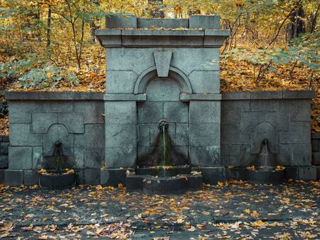 Three taps from which water flows. The water is clean and clear for drinking. Cranes made in a stone wall against the backdrop of an autumn park