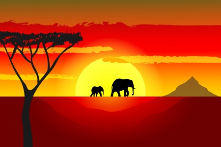 African sunset with elephant silhouettes Vector