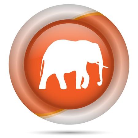 endanger: Glossy icon with white design on orange plastic background