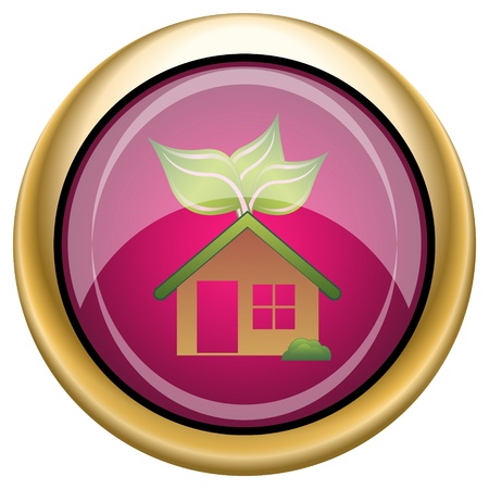 Shiny glossy icon with green design on magenta and gold background Stock Photo - 21335272