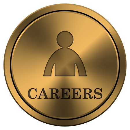 career entry: Metallic icon with carved design on copper-colored  background