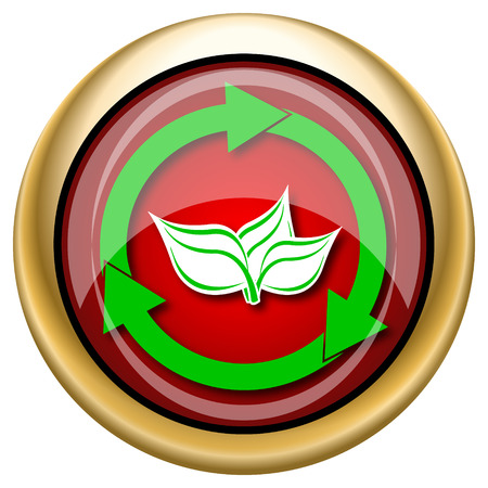 Shiny glossy icon with green design on red and gold background photo