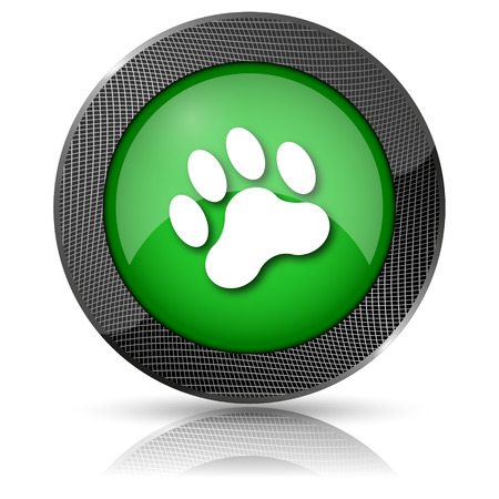 Shiny glossy icon with white design on green background photo