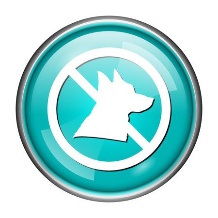 dog allowed: Round glossy icon with white design of no dog on aqua background Stock Photo