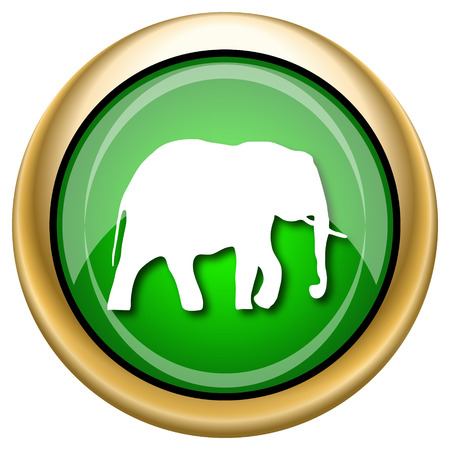 endanger: Shiny glossy green and gold icon - internet button