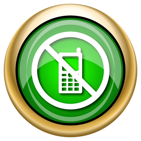 refrain: Shiny glossy green and gold icon - internet button
