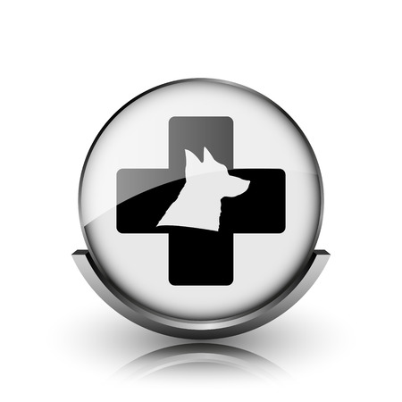 Veterinary icon. Shiny glossy internet button on white background.  photo