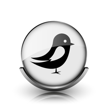 chirp: Bird icon. Shiny glossy internet button on white background.