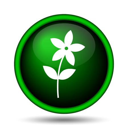 Flower  icon. Internet button on white background.  photo