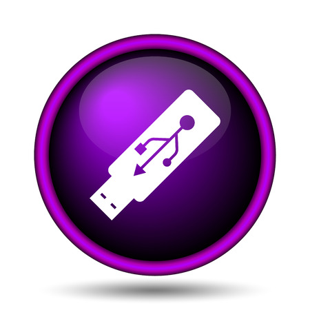 pendrive: Usb flash drive icon. Internet button on white background.