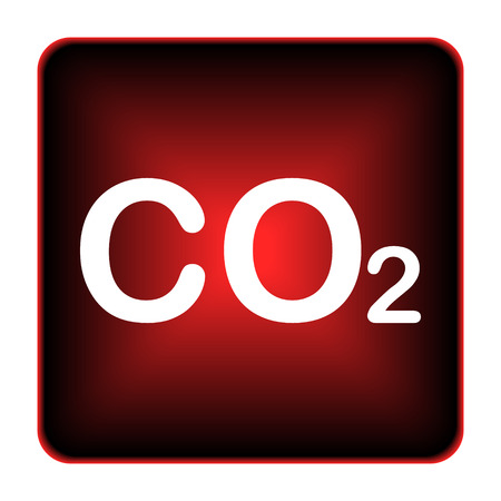 emission: CO2 icon. Internet button on white background.