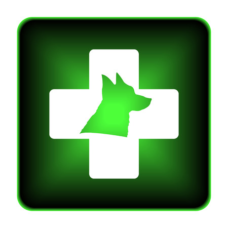 Veterinary icon. Internet button on white background.  photo