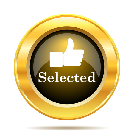 Selected icon. Internet button on white background. photo
