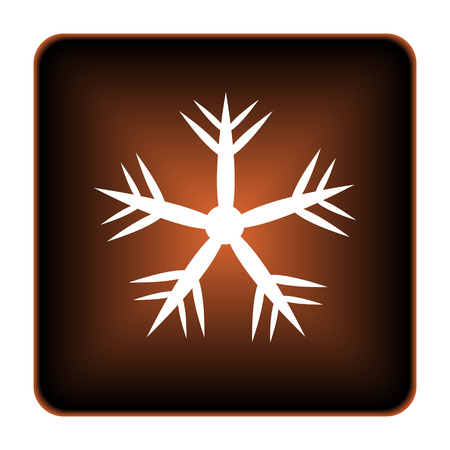 Snowflake icon. Internet button on white background. photo