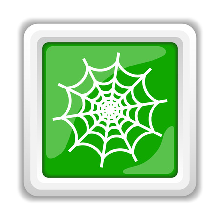 Spider web icon. Internet button on white background. photo