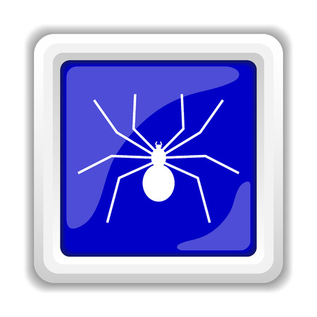 Spider icon. Internet button on white background. photo
