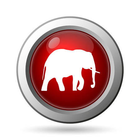 Elephant icon. Internet button on white background. photo